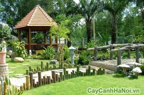 Cảnh quan luôn xanh tươi nhờ dịch vụ chăm sóc cây xanh